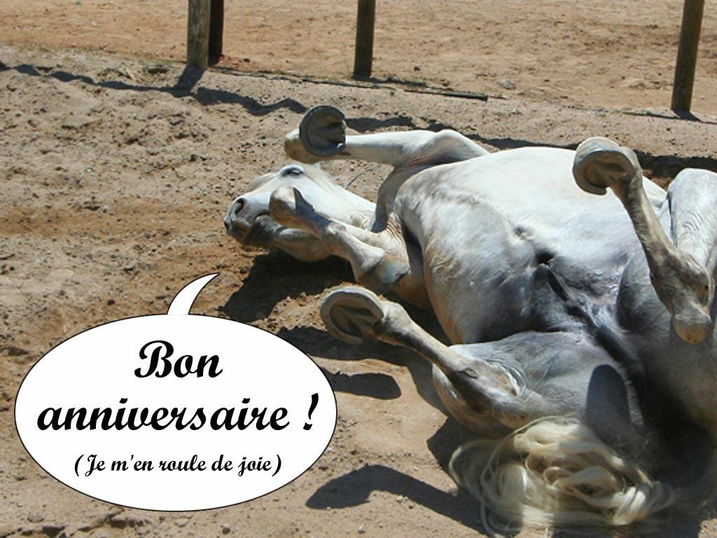 bon anniversaire en cheval