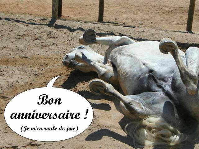 bon anniversaire cheval